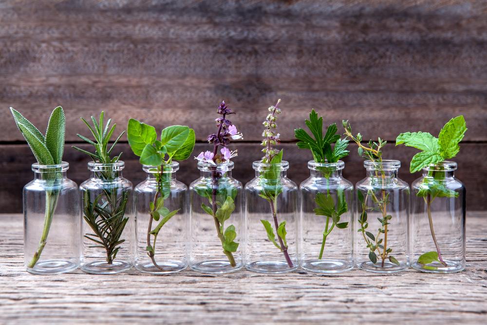 01-homeopatija